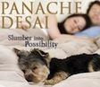 panache desai slumber meditation